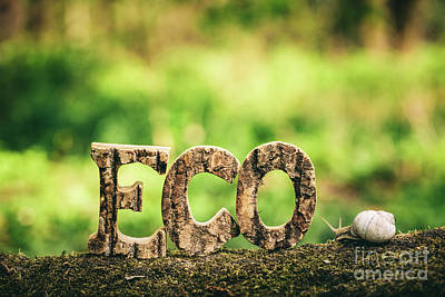 Photograph - Eco Writing Made From Wooden Letters And A Snail by Michal Bednarek