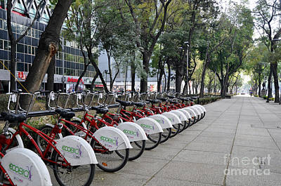 Photograph - Ecobici by Andrew Dinh