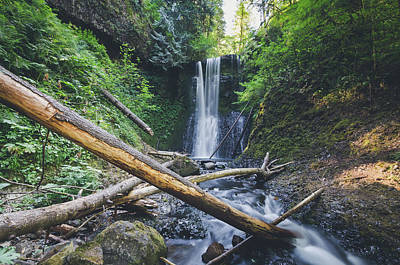 Photograph - Ecola Falls No.2 by Margaret Pitcher