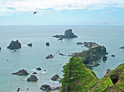 Photograph - Ecola Point In Ecola State Park, Oregon by Ruth Hager