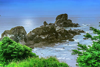 Photograph - Ecola State Park Oregon 2 by Shiela Kowing