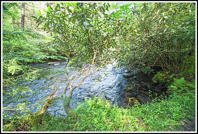Photograph - Ecology, Lotic, Stream Ecosystem, Pocono Mountains by A Gurmankin
