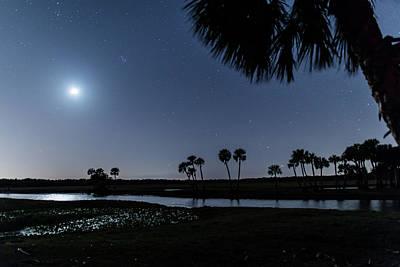 Photograph - Econlockhatchee River At Night by Stefan Mazzola