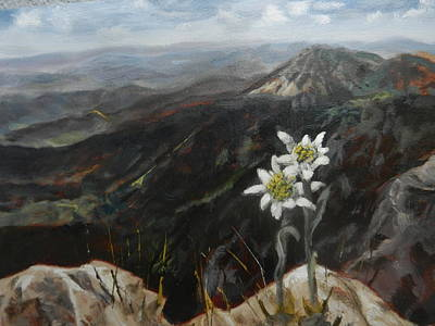 Painting - Edelweiss Moment by Joyce Snyder
