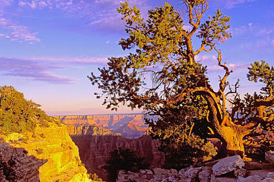 Edge Of Canyon Art Print by Alan Lenk