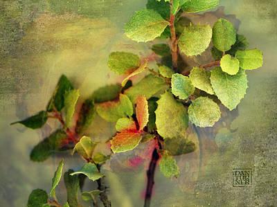 Edge Of Eden Art Print by Dan Turner