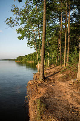 Photograph - Edge Of Lake Jordan  by Anthony Doudt