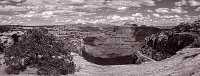 Photograph - Edge Of The Canyon by Leda Robertson