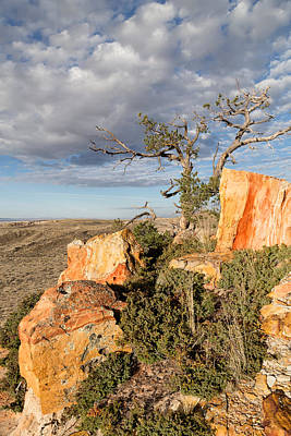 Photograph - Edge Of The Mesa by Kathleen Bishop