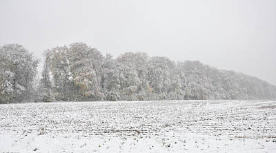 Photograph - Edge Of The Woods, Ealry Snow On Autumn Leaves by Martin Stankewitz