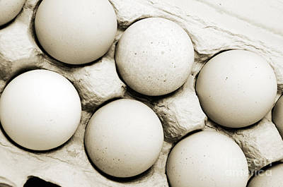 Photograph - Edgy Farm Fresh Eggs by Andee Design