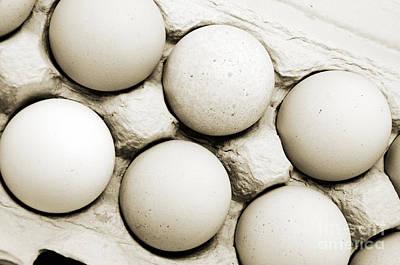 Photograph - Edgy Farm Fresh Eggs by Andee Design