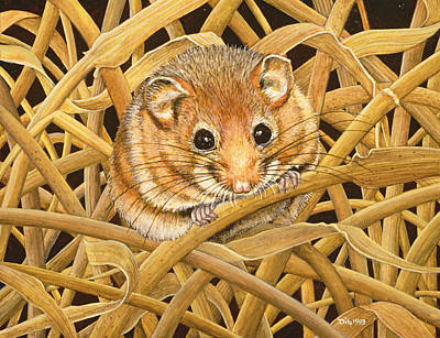 Field Mice Painting - Edible Dormouse by Ditz