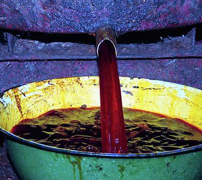 Photograph - Edible Palm Oil Rush by Muyiwa OSIFUYE