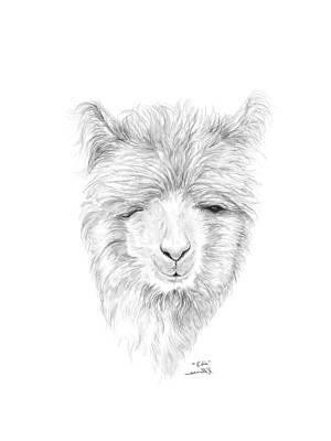 Drawing - Edie by K Llamas