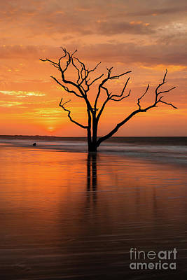Photograph - Edisto Island Sunrise V by Clarence Holmes