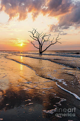 Photograph - Edisto Island Sunrise Vi by Clarence Holmes