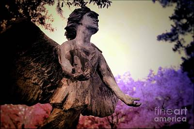 Mixed Media - Edisto Memorial Gardens South Carolina 3 by Bob Pardue