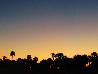 Photograph - Edisto Sunset by Joshua Bales