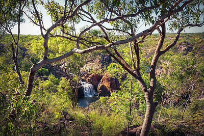 Photograph - Edith Falls Framed Between Trees, Katherine, Australia by Daniela Constantinescu