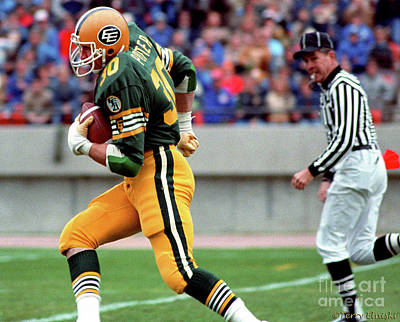 Photograph - Edmonton Eskimos Football - Dale Potter - 1981 by Terry Elniski