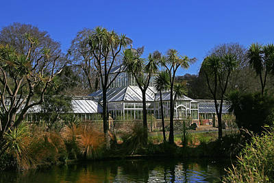 Photograph - Edwardian Glasshouse With Duck Pond And Cabbage Trees.  by Nareeta Martin
