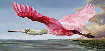 Painting - Edward's Roseate Spoonbill by Phyllis Beiser