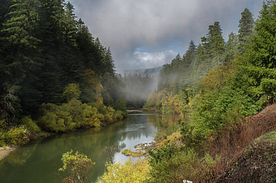Photograph - Eel River Autumnal Redwood Glory 3 by Greg Nyquist