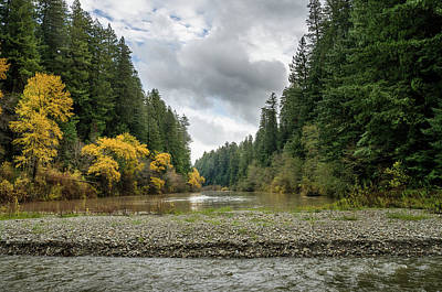 Photograph - Eel River From Bull Creek by Greg Nyquist