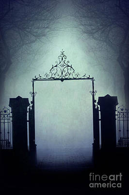 Photograph - Eerie Gateway In Fog At Night  by Lee Avison