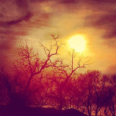 Photograph - Eerie Sunscape by Michael Oceanofwisdom Bidwell