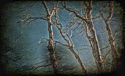 Raising Mixed Media - Eerie Trees by Edelberto Cabrera