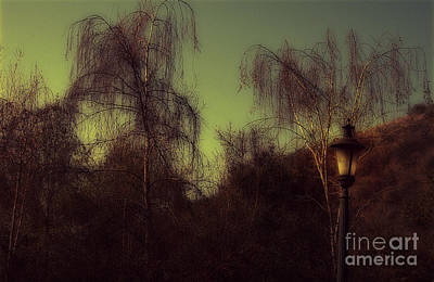 Photograph - Eery Park by Clayton Bruster