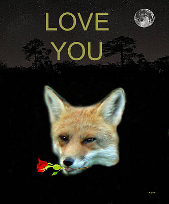 Vixen Mixed Media - Eftalou Fox Max With Rose Love You by Eric Kempson