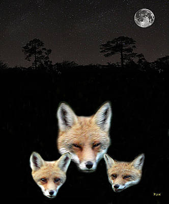 Mixed Media - Eftalou Foxes One by Eric Kempson