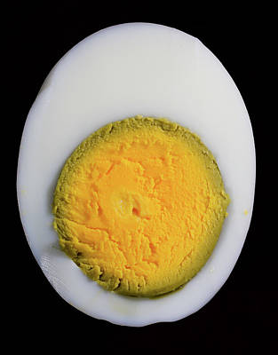 Photograph - EGG by Hyuntae Kim