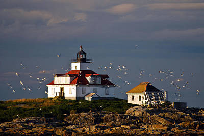 Photograph - Egg Rock Light   Maine by Mark Wiley
