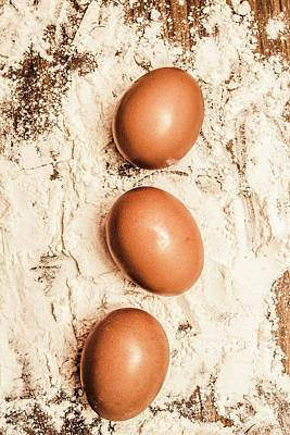 Photograph - Egg Triptych by Jorgo Photography - Wall Art Gallery