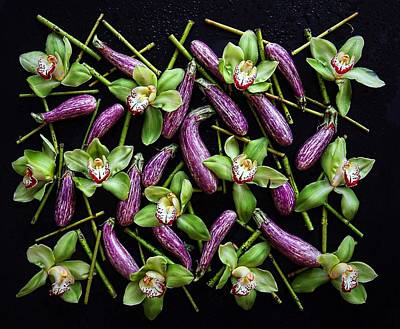 Photograph - Eggplant Patterns by Sarah Phillips