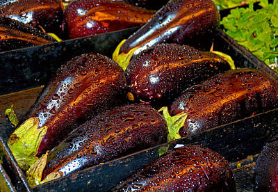 Photograph - Eggplants by Robert Meyers-Lussier