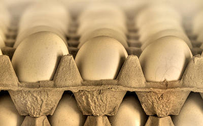 Photograph - Eggs by Evelina Kremsdorf