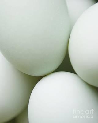 Kitchen Photograph - Eggs by MingTa Li