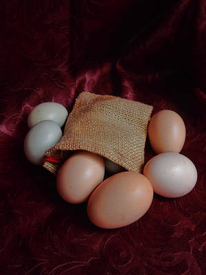 Photograph - Eggs by Pamela Walton