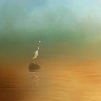 Photograph - Egret At Sea by Jai Johnson
