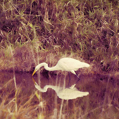 Photograph - Egret In Abstract by HW Kateley