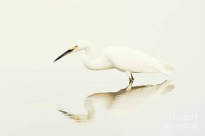 Egret In Vanilla Tones Art Print