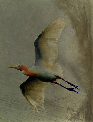 Digital Art - Egret by Jean Moore