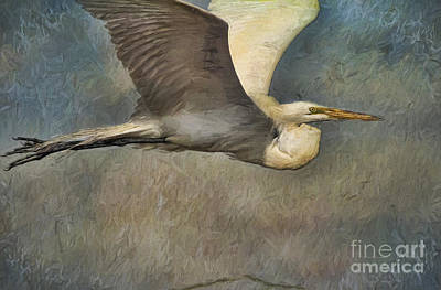 Egret Journey Art Print by Deborah Benoit
