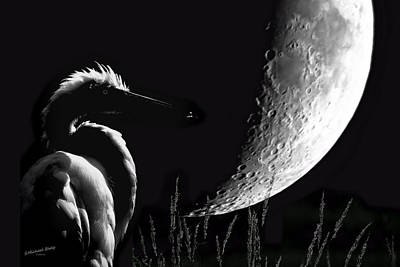 Photograph - Egret Moon In Silhouette by S Michael Basly - PhotoGraphics By S Michael