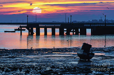 Photograph - Egrets At Sunset Puerto Real Cadiz Spain by Pablo Avanzini